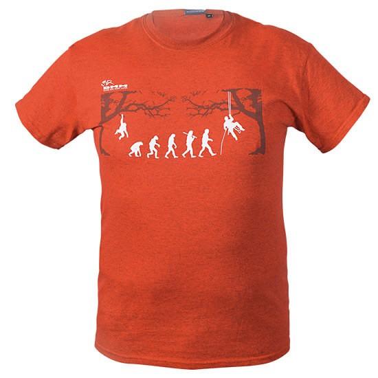 DMM T-Shirt Arb-Evolution