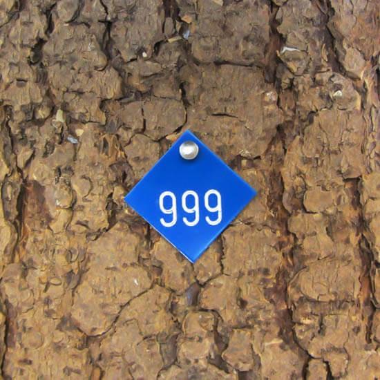 Alu Tree Number Badge Diamond 30 mm